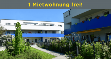 Mietwohnung in Kirchdorf/Krems - Hentschläger Immobilien