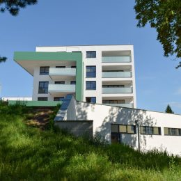 Wohnen am Breitwieserhof - Wohnqualität im Zentrum - Immobilien